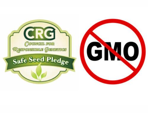 Non-GMO, Organic, Heirloom, and Hybrid Variety Seeds